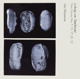 《テンペスト》&《ハンマークラヴィーア》~ベートーヴェン:ピアノ・ソナタ集-4 WAKA-4137-8